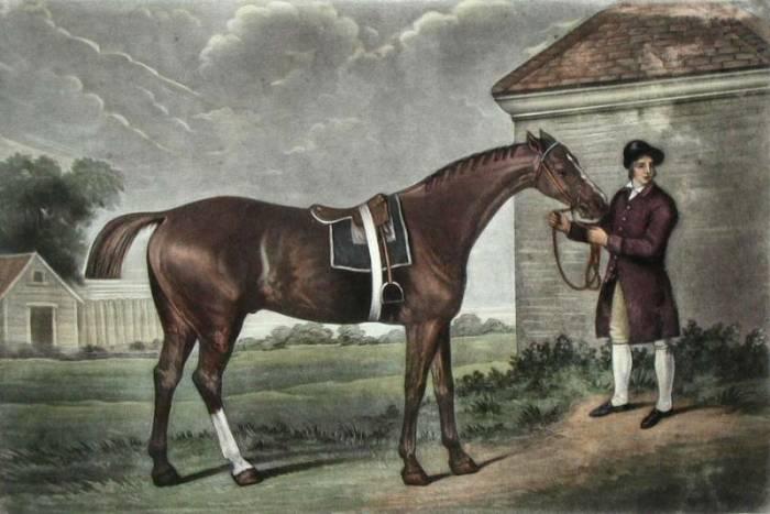 лошадь картина 18 век