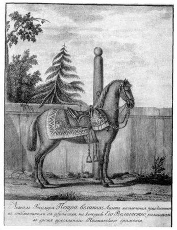 лошадь Петра-1