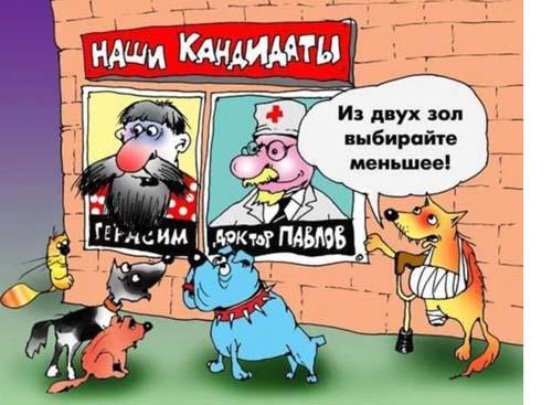 карикатура выборы